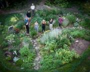 Apprentices in the Perennial Garden