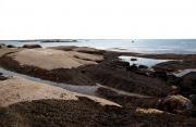 Eastern Island Tide Pool