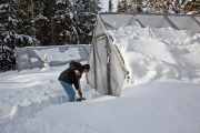 Shoveling a Path to the Greenhouse